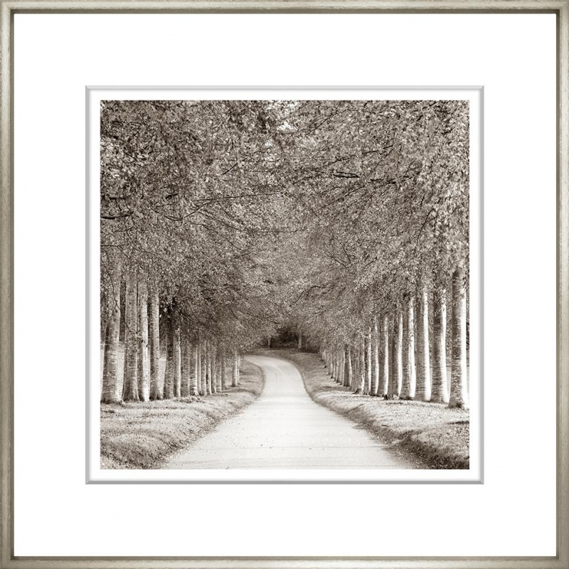 Sepia Landscape Collection